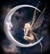 fee_lune